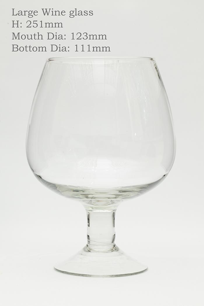 17-Large wine glass